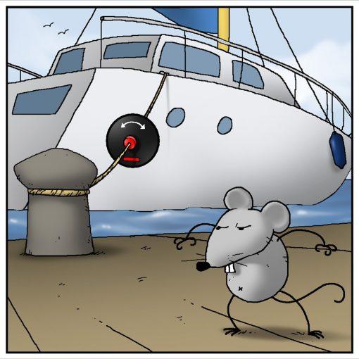 Rattenschutz S für Belegleinen