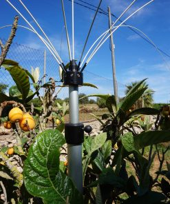 Bird control for garden and balconies